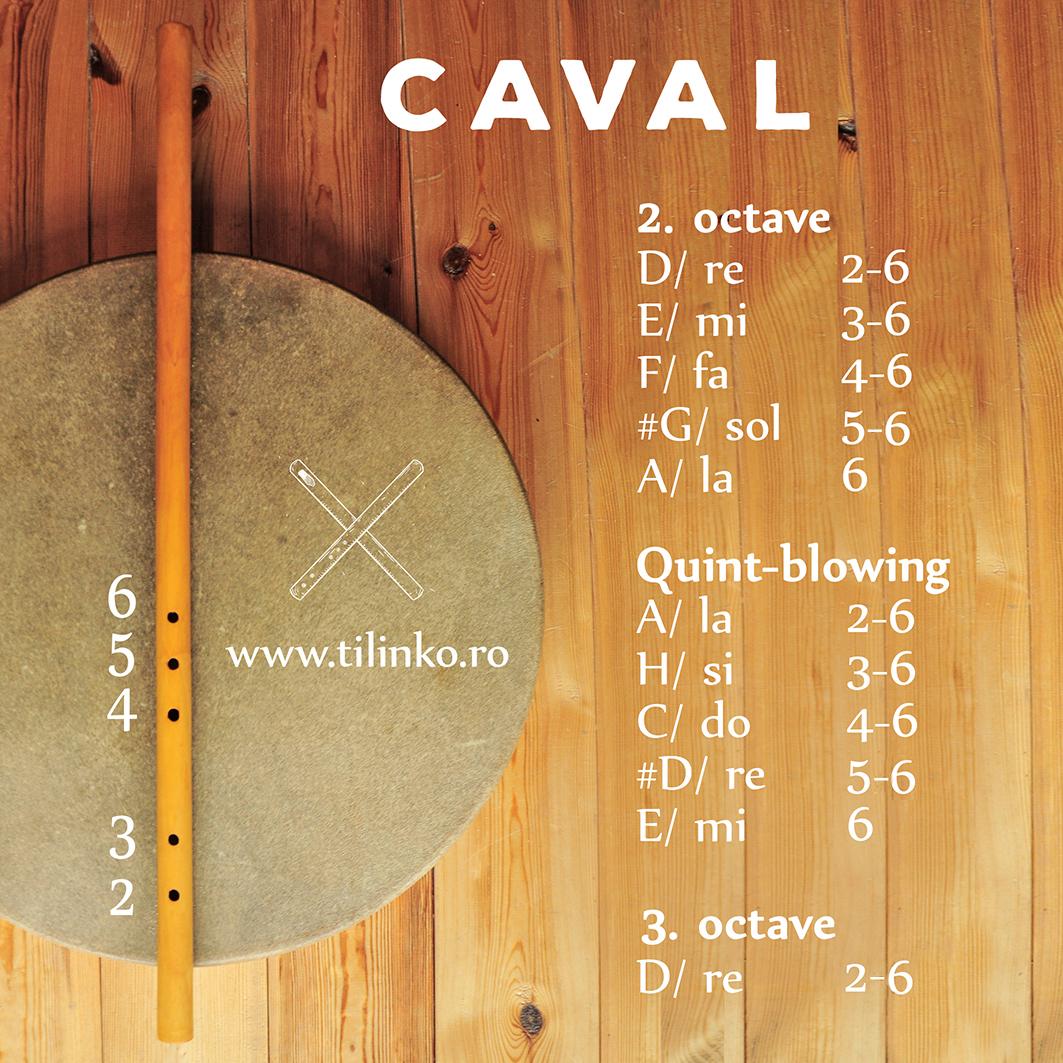 #whistle #whistles #traditional #romanian #flute #flutes #fluier #ciobanesc #shepherd #furulya #pasztor #kaval #caval #romaneasca #autentic #hangszer #hagyomanyos #roman #instrument #muzical #carpathic #carpath #tilinca #tilinko