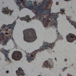 Microscop metalurgic inversat LACERTA