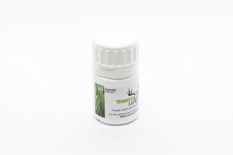 PREMIUM LINE - Freeze-dried wheatgrass juice in a VEGAN capsule - 30 days dose package